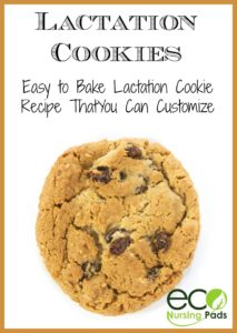 lactation-cookies-an-easy-to-bake